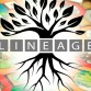 Lineage-Feature