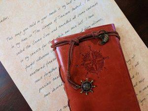 The Journal of Flintlock Flynn