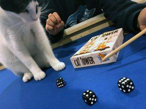 Cat Tower Dice