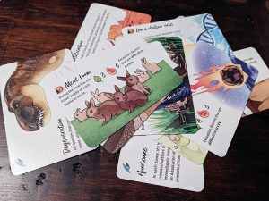 Darwin's Choice Cards
