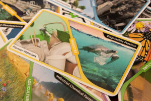 Earth Rising Cards